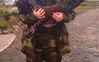 Охота на фазана в Ленинградской области